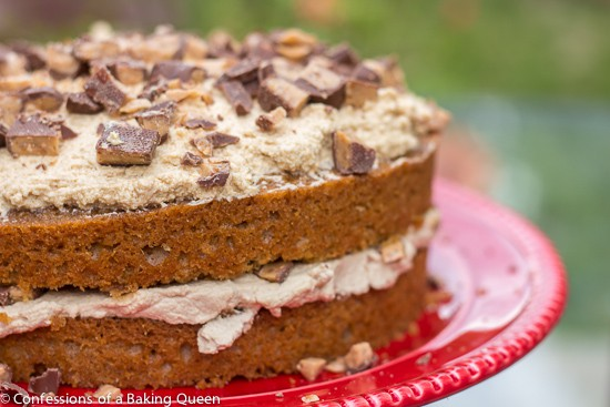 coffeeheathbarcrunchcake-1-of-1-6