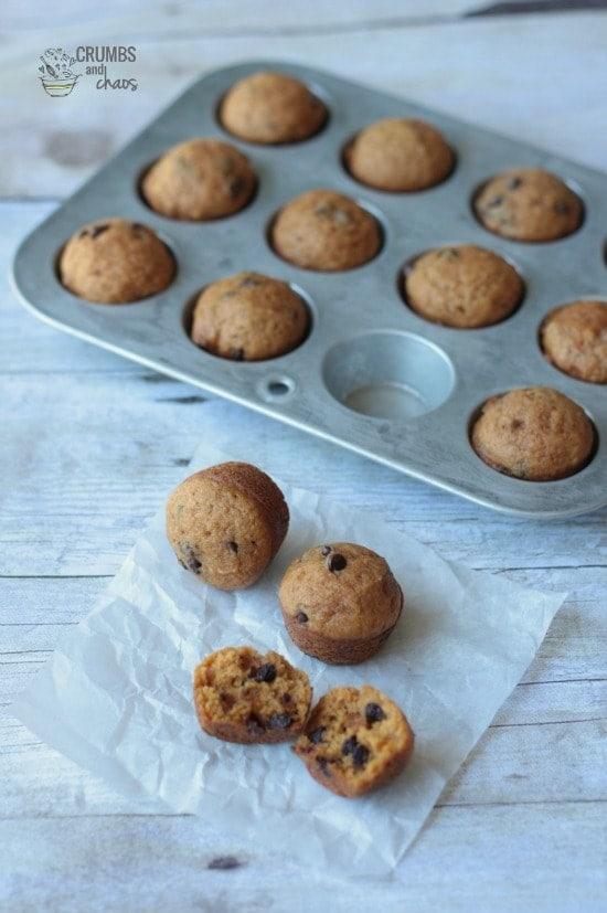 Mini_Pumpkin-Chocolate-Chip-Muffins