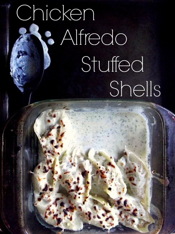Chicken-Alfredo-Stuffed-Shells1