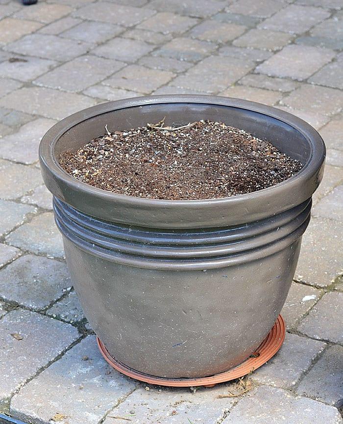 my-old-yucky-planter