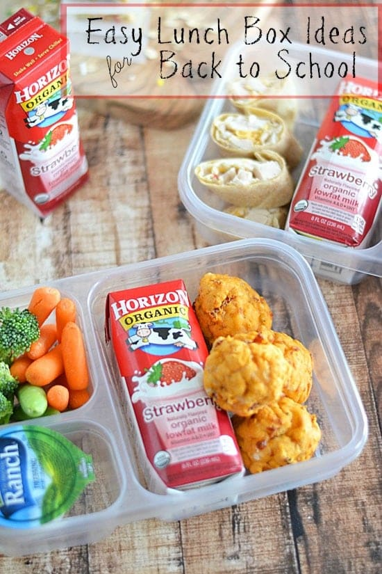 Easy Lunch Box Ideas for Back to School