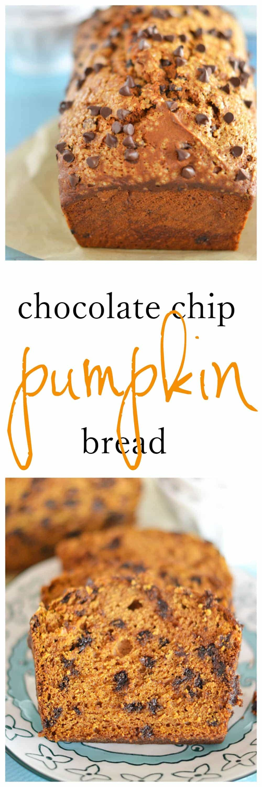 Chocolate Chip Pumpkin Bread | Kitchen Meets Girl